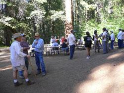 2009-break-picnic-area
