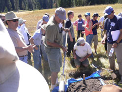 2009-rice-arroues-augering
